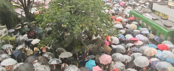 Tsuyu et Akisame, saisons des pluies au Japon