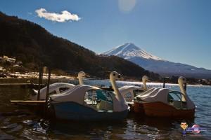 Fujigoko les 5 lacs du Mont Fuji pédalo