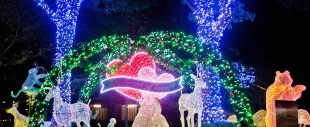 Illuminations de Noël et d'hiver au Japon, les plus beaux spots