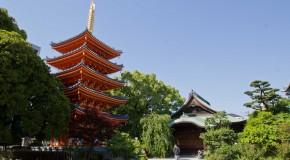 Tocho-ji et son grand Bouddha en bois