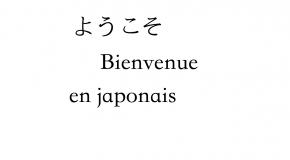 Comment dire bienvenue en japonais, Yokoso et autres