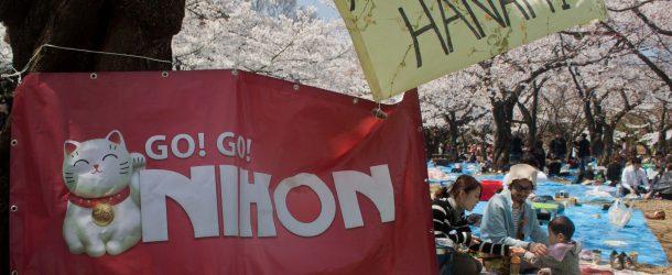 Go Go Nihon, mon avis et pourquoi je ne recommande pas!